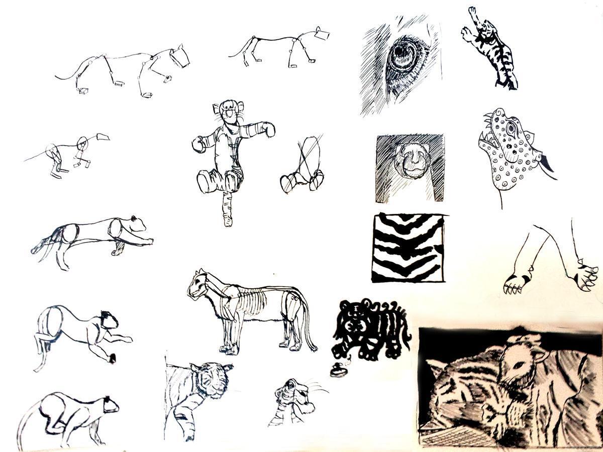 Corpus tigre
